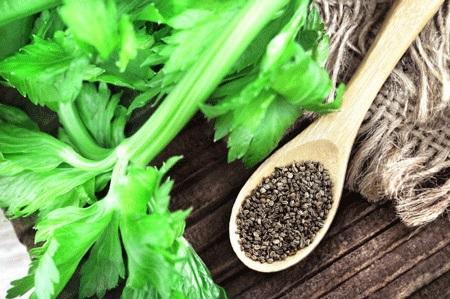 داروی گیاهی برای فشارخون بالا