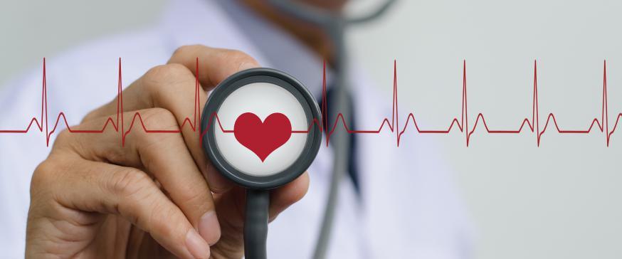 بهترین متخصص قلب در تهران